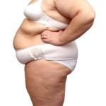 overweight woman body in underwear